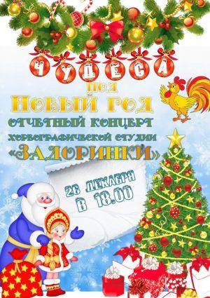 """Отчетный концерт """"Чудеса под Новый год"""""""